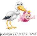 Stork Cartoon Pregnancy Myth Bird With Baby Girl 48701244