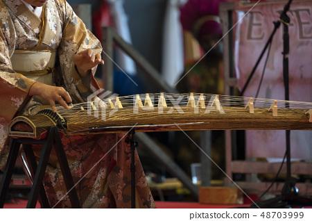Koto japanese harp 48703999