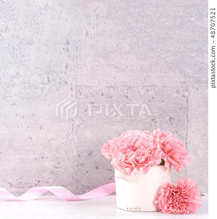 母亲节 康乃馨 送礼 カーネーション 清水模 モックアップ 母の日 carnation 48707521
