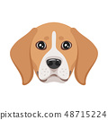 dog pet head icon 48715224