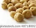 新土豆 48718002