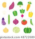 可愛的蔬菜 48722689