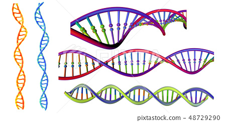 DNA strand set. Isolated on transparent 48729290