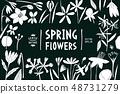 Spring flowers design template. Scandinavian style 48731279
