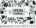 Spring flowers design template. Scandinavian style 48731332