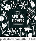 Spring flowers design template. Scandinavian style 48731340