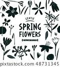 Spring flowers design template. Scandinavian style 48731345