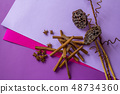 Still life of dry lotus, cinnamon sticks and anise stars lying on coloured background 48734360
