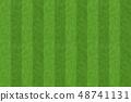 green grass background 5 48741131