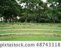Benjakitti Park, Bangkok, Thailand (방콕, 벤처 키티 공원) 48743318