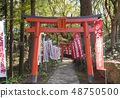 The approach of the Tenshu Inari company in the Dazaifu Tenmangu Shrine (Dazaifu City, Fukuoka Prefecture) 48750500