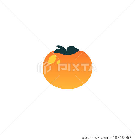 Vector persimmon exotic tropical fruit flat icon 48759062