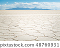 Salt flats of uyuni from the air with copy space 48760931