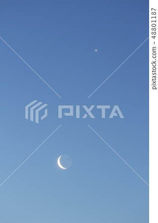 Moon and star 48801187