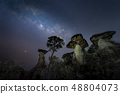 The Milky Way is above the natural stone pillars 48804073