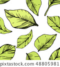 Vector Blueberry green and black engraved ink art. Green leaves. Seamless background pattern. 48805981