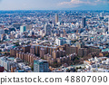 東京都市風景在春天 48807090