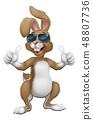 兔子 兔 太阳镜 48807736