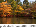 Karuizawa Cloudfield pond 12 with bright autumn leaves 48808890