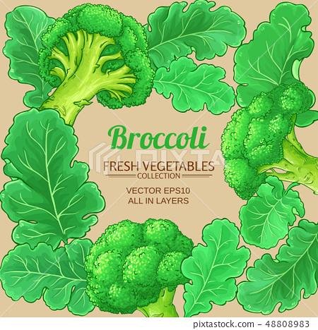 broccoli vector frame stock illustration 48808983 pixta pixta