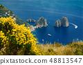 Capri island, view of Faraglioni 48813547