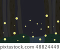 Landscape with fireflies flying 48824449