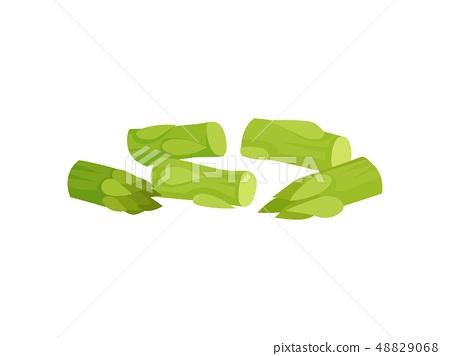 Green celery slice. Fresh vegetable on white background. 48829068
