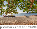 Arch tree on the beach with wooden boat on 48829498