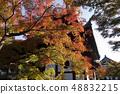 【京都府】東福寺的秋葉 48832215