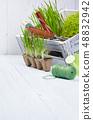 gardening tools background 48832942