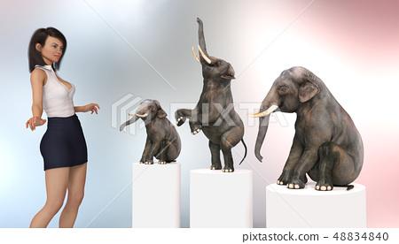 Female circus tamer with dwarf elephants 48834840