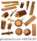 Wooden chips and bark, timber and stum. Wood 48838187