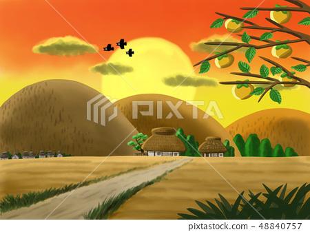 鄉下和日落和橡樹 48840757
