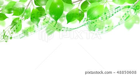 新的綠色葉子綠色背景 48850608