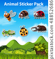 Set of insect sticker 48852686