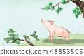 動物 日曆 月曆 48853505