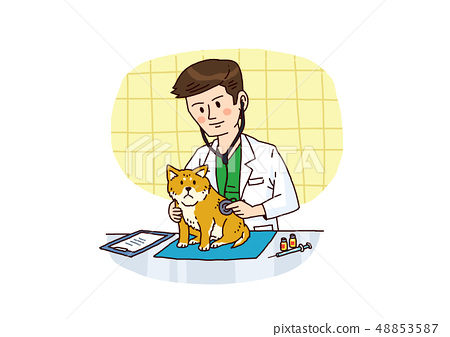 Vector - Examination and healthcare for pets illustration. 002 48853587