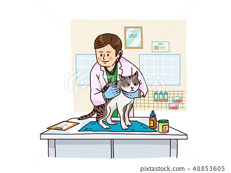 Vector - Examination and healthcare for pets illustration. 005 48853605