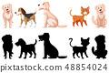 Set of animal character 48854024