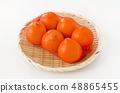 Mineola橙色麦肯网 48865455