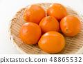 Mineola Orange 48865532