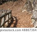 在日光Urayaki瀑布的下落的葉子埋沒的木板走道 48867364
