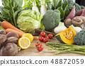 Vegetables 48872059