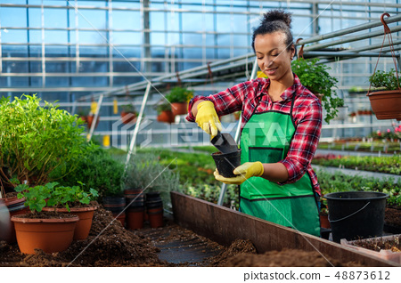 Black woman working in a botanical garden 48873612