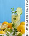Homemade refreshing lemonade 48876102