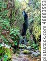 Saitama Oshio Kuroyama Mitaki (tengu waterfall) 48883553