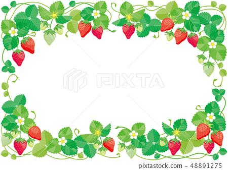 Strawberry frame 48891275
