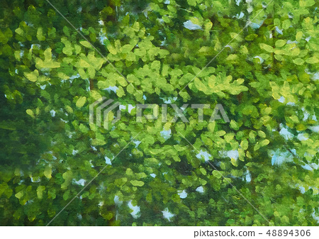Background image of a canvas painted with green  48894306