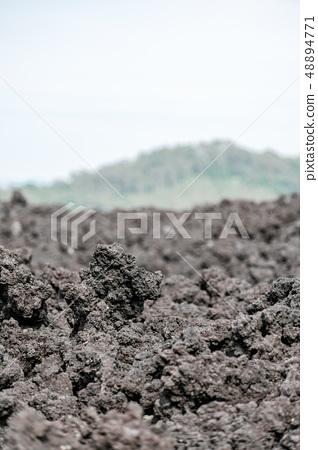 오한 굳어진 용암 (소 주행 용암 흐름) 48894771