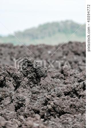 오한 굳어진 용암 (소 주행 용암 흐름) 48894772